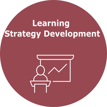 Learning Strategy Development